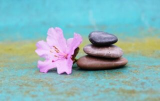 Tracy Makris balanced life approach to bring calm